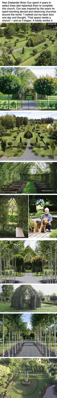 This Guy Spent 4 Years Growing A Church From Trees