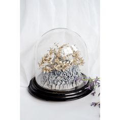 Luxurious Antique Silvered Wedding Crown in glass dome Couronne  Globe de mariée von PollyMcGeary