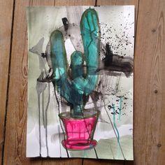 Kaktus / Cactus