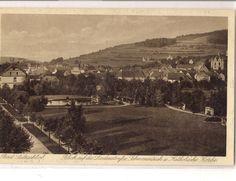 Weidenpark 1924