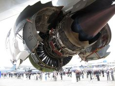 Cool photos of jet engines with their shell open General Electric GEnx turbofan engine.