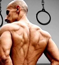 13 Reasons Why You Need to Start Doing Bodyweight Exercises