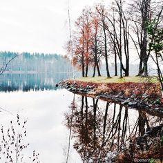 By petterihyryla: Vuoksen varrelta.  Vuoksi river.  #Vuoksi#Imatra#joulukuu#december#Finland#nature#landscape#luontokuva#finnishnature#valokuvaus#photography#mikro43#m43 #landscape #contratahotel
