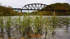Monongahela Railway Bridge-over Monongahela River near Prickett's Fort State Park-2014-Creed Holden--EWVAIH