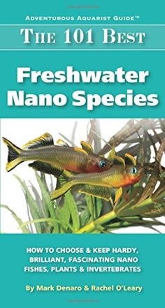 The 101 Best Freshwater Nano Species: How to Choose & Keep Hardy, Brilliant, Fascinating Nano Fishes, Plants & Invertebrates (Adventurous Aquarist Guide) by Mark Denaro Aquarium Setup, Nano Aquarium, Aquarium Design, Saltwater Aquarium, Planted Aquarium, Aquarium Fish, Aquarium Ideas, Tropical Freshwater Fish, Freshwater Aquarium