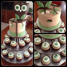 Baby shower owl cake and cuppies