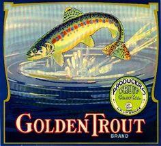 Reduced prices, check out. Vintage Advertisements, Vintage Ads, Vintage Posters, Vintage Ephemera, Etsy Vintage, Vintage Food Labels, Orange Crate Labels, Vegetable Crates, Vintage Graphic Design