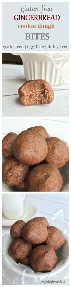 Gluten-Free Gingerbread Cookie Dough Bites by Gluten-Free Palate (GF, DF, EF)