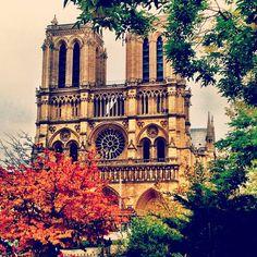 j'aime paris in the fall [notre dame on île de la cité] The 4, Notre Dame, Places To See, Paris, Building, Instagram Posts, Travel, Montmartre Paris, Viajes
