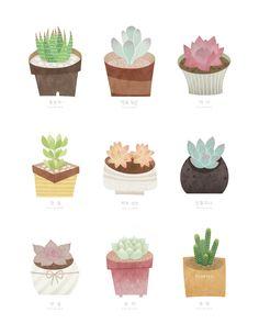 수채화 일러스트 식물 - Google 검색