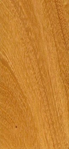 Yellow Hardwood Boards ~ Images about orange woods on pinterest periodic