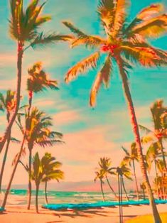 I enjoy the beaches in pacific island beaches the best. I believe that pacific island beaches has beaches that are great. Everything from great white sand to 80 degree water; all over the place. Bedroom Wall Collage, Photo Wall Collage, Picture Wall, Strand Wallpaper, Beach Wallpaper, Summer Wallpaper, Beach Aesthetic, Aesthetic Photo, Orange Aesthetic