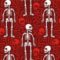 skelett, skeleton, anatomy, anatomie, human, mensch, Anatomie…