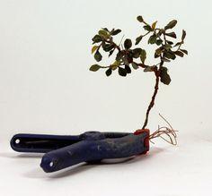 FCModeltips . Federico Collada: Ramas / branches