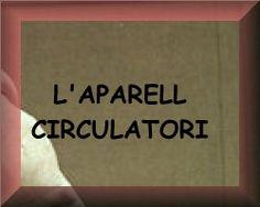 Aparell circulatori