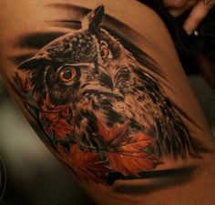 Guess I have a thing for owls