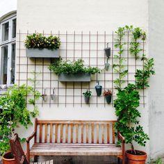 A little place for us. Patio Wall Decor, House Plants Decor, Diy Garden Decor, Plant Decor, Outdoor Wall Decorations, Vertical Garden Design, Herb Garden Design, Vegetable Garden Design, Garden Landscape Design