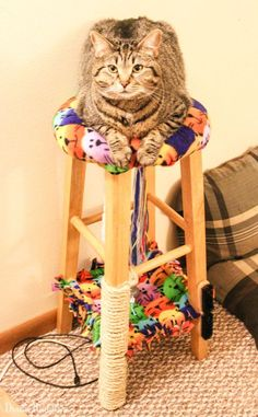 Want To Create A Cat Tree For Your Cat? Make This Cat Condo From An