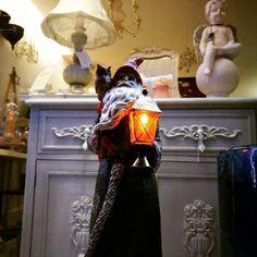 O espírito de Natal já invadiu a 7eva. FAÇA COMPRAS NO COMÉRCIO TRADICIONAL ##foralifeinstyle💗 #7eva_design #homedecor #natal16✌🏻️🎄 (em 7eva design)