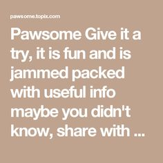 Pawsome Give it a try, it is fun and is jammed packed with useful info maybe you didn't know, share with your fellow cat lover friends & furbaby lovers for more fun and engagement!!