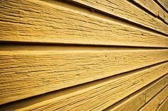 Piirun maalikoealue New Times, Traditional, Wood, Woodwind Instrument, Timber Wood, Trees