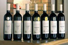 .slovakia labels Wine Tourism, Central Europe, Bratislava, Wine Making, Homeland, Wine Rack, Wines, Culture, History