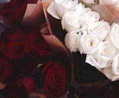 #flowers #gorgeous #red white #roses