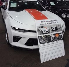 Lots Of Modified Late Models Barrett Jackson Auction, Corvette, Dodge, Mustang, Trucks, Models, Vehicles, Car, Templates