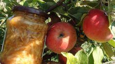 Receptnapló: Reszelt alma télire Peach, Apple, Fruit, Food, Apple Fruit, Essen, Peaches, Meals, Yemek