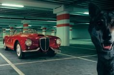 Wallpaper car and wolf garage