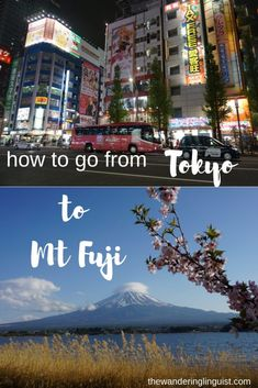 How to get to Mt Fuji station from Tokyo in Japan - The Wandering Linguist Tokyo Japan Travel, Japan Trip, Hiking Spots, Hiking Trips, Travel Advice, Travel Ideas, Travel Tips, Bus Travel, Train Travel