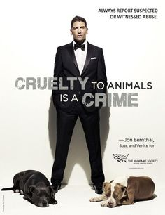Cruelty to Animals is a CRIME. REPORT Animal Abuse!