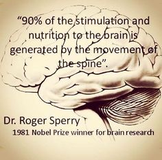 of stimulation and nutrition to the brain is generated by the movement of the spine.Roger Sperry - no wonder why Yoga is sooo powerful and why it is said - you are young as your spine is flexible/elastic. Health Facts, Health Quotes, Health And Nutrition, Health Tips, Health Fitness, Chiropractic Quotes, Chiropractic Wellness, Chiropractic Benefits, Chiropractic Clinic