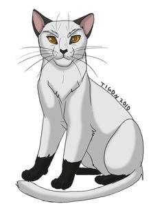 Blackstar- was an especially awesome leader. He was one of the best shadowclan leaders in my opinion. X3 ART NOT MINE