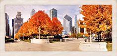 Grant Park Chicago Il. <3