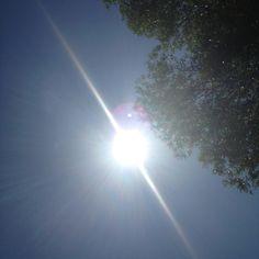 Soak up the sun (Winnipeg, MB)