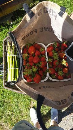 Selbstgepflückte Erdbeeren vom Feld für eine köstliche Erdbeer-Konfitüre aus dem Kombi-Steamer. Ich bin immer wieder jedes Jahr erstaunt, wie einfach es geht. Images Esthétiques, Think Food, Aesthetic Food, Aesthetic Vintage, New Wall, Summer Vibes, Food Porn, Foodies, Food And Drink