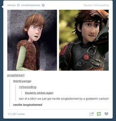 Dammit Hiccup! #How to train your dragon #HTTYD