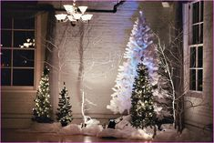 Winter Wedding Decoration Ideas Pictures