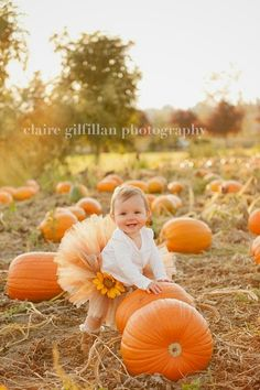 similar to SALE Pumpkin Spice Tutu - Perfect for fall photos and made in any size Newborn - on Etsy little girl photo shoot ideas