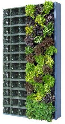G Store Facade Wall Garden Starter Kit With 8 Wall Garden Pots   Brand New    Landscaping   Pinterest   Landscaping, Garden Ideas And Plant Wall