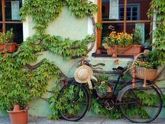 kalap és bicikli..