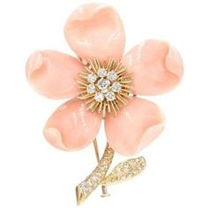 """Preowned Van Cleef & Arpels Paris """"clematis"""" Coral Diamond Gold Brooch ($37,000) ❤ liked on Polyvore featuring jewelry, brooches, red, gold diamond jewelry, diamond jewellery, coral brooch, red brooch and leaf jewelry"""