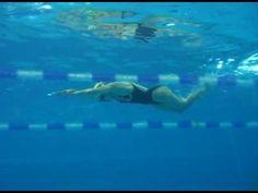 Everybodyswim : Butterfly stroke - YouTube