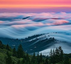 San Francisco fog - photographed by Nick Steinberg