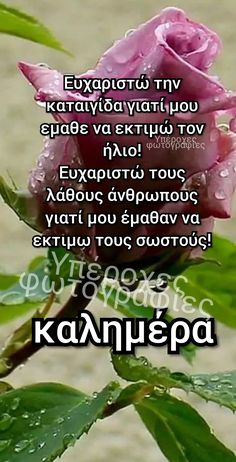 Greek Beauty, Greek Quotes, Greek Recipes, True Words, Good Morning, Inspiration, Gem, Buen Dia, Biblical Inspiration