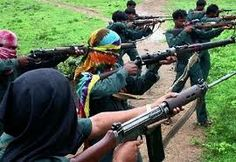 Naxals and the mobile tower fixation