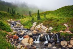 Rainier Romp by Brad North on Pacific Northwest, North West, Paradise, River, Photography, Outdoor, Image, Outdoors, Photograph