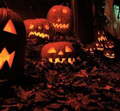Tommorow the trick or treaters will run amok, tis time for All Hallows' Eve🎃🖤🧡🌙 Theme Halloween, Halloween Pictures, Halloween Season, Holidays Halloween, Spooky Halloween, Vintage Halloween, Halloween Pumpkins, Happy Halloween, Halloween Decorations