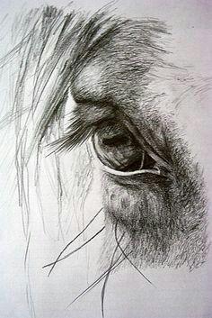 Resultado de imagen de horses drawings